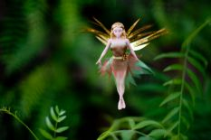 b_233_155_16777215_00_images_productimages_daria-forest-fairy.jpg