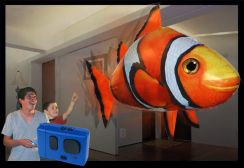 b_244_168_16777215_00_images_productimages_clownfish.jpg